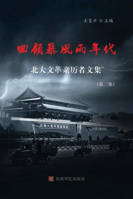 View 回顾暴风雨年代 by 王复兴