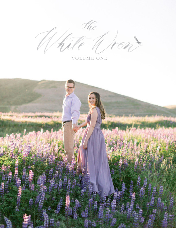 View The White Wren Volume 1 by The White Wren