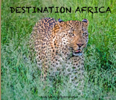 Destination Africa book cover
