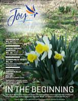 Joy of Medina County Magazine May 2020 book cover