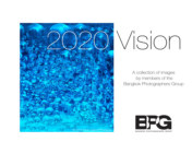 2020 Vision BPG book cover