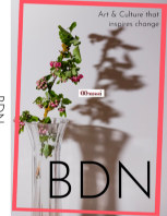 bdn book cover