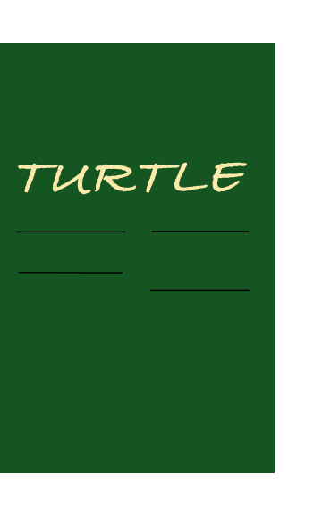View Turtle by Turtle