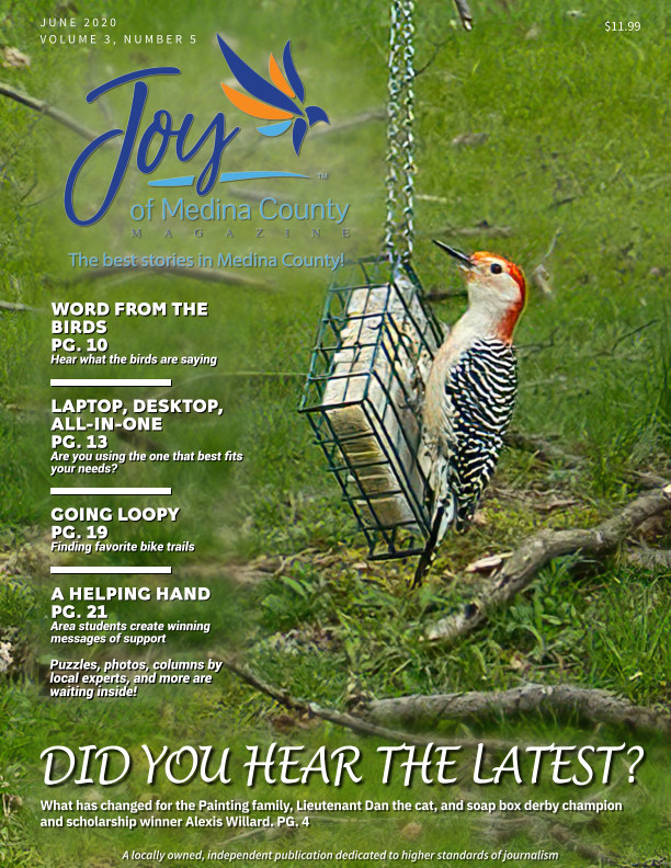 View Joy of Medina County Magazine June 2020 by Blake House Publishing, LLC