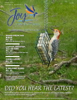 Joy of Medina County Magazine June 2020 book cover