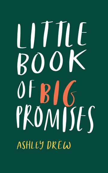 View Little Book of Big Promises by Ashley Drew