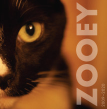 Zooey book cover