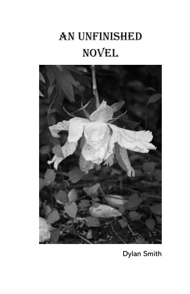 View An Unfinished Novel by Dylan Smith
