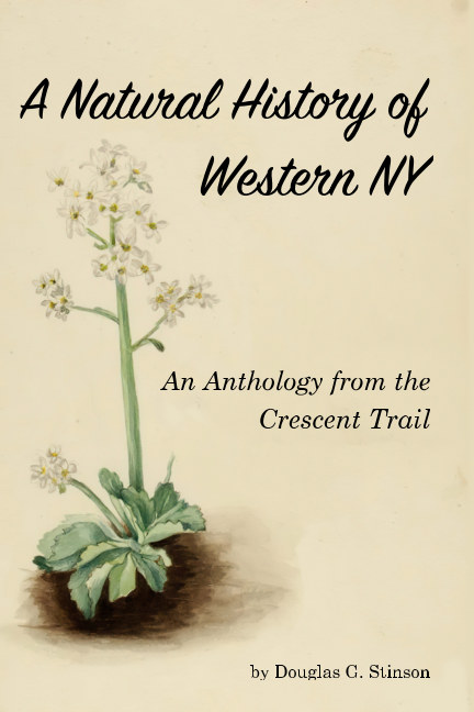 View A Natural History of Western New York by Douglas G. Stinson