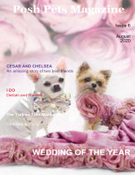 Posh Pets Magazine Issue 6 book cover