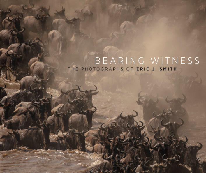 View Bearing Witness by Eric J. Smith