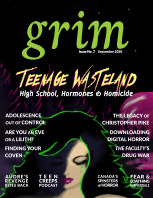 Grim No. 7 - Teenage Wasteland book cover
