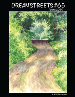 Dreamstreets #65 book cover