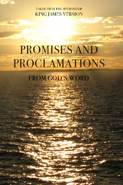 View Promises and Proclamations from God's Word by Brian C. Austin
