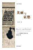 美丽与哀愁 book cover