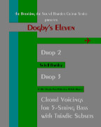 Dogby's Eleven for 5-String Bass book cover