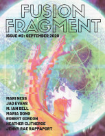Fusion Fragment #2 book cover
