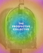 The Prospective Collective book cover