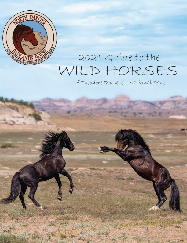 View 2021 Guide to the Wild Horses of TRNP by North Dakota Badlands Horse