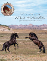 2021 Guide to the Wild Horses of TRNP book cover