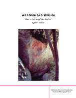 Arrowhead Spring book cover