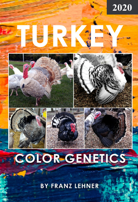 View Turkey Color Genetics by Franz Lehner