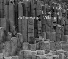 Island Landslag II book cover