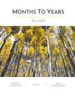 Months To Years Fall 2020 book cover