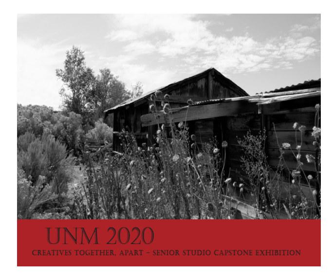 View UNM 2020 Creatives Together,Apart by UNM 2020 Senior Capstone