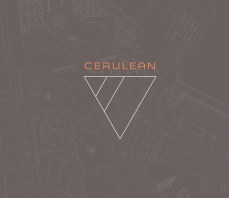 CeruleanProject • 2020 Book • Deluxo Edition book cover