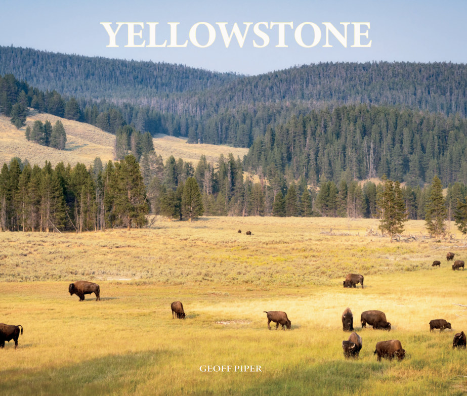 View Yellowstone by GEOFF PIPER