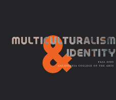 Multiculturalism and Identity book cover
