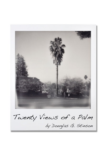 Bekijk Twenty Views of a Palm op Douglas G. Stinson