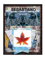 sebastiano book cover