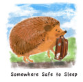 Somewhere Safe to Sleep book cover