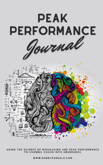 View HERO Peak Performace Journal by Robby D'Angelo