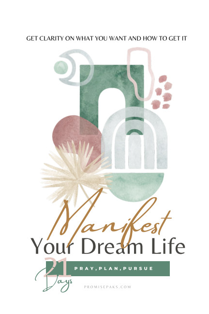 View Manifest Your Dream Life by Promise Paks