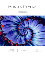 Months To Years Spring 2018 book cover