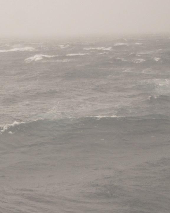 Ver Rogue Wave por Andrew Thomas