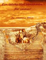 Ein letztes Mal abnehmen - für immer! book cover