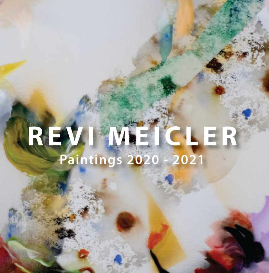View Revi Meicler - Paintings 2019 - 2021 by Revi Meicler