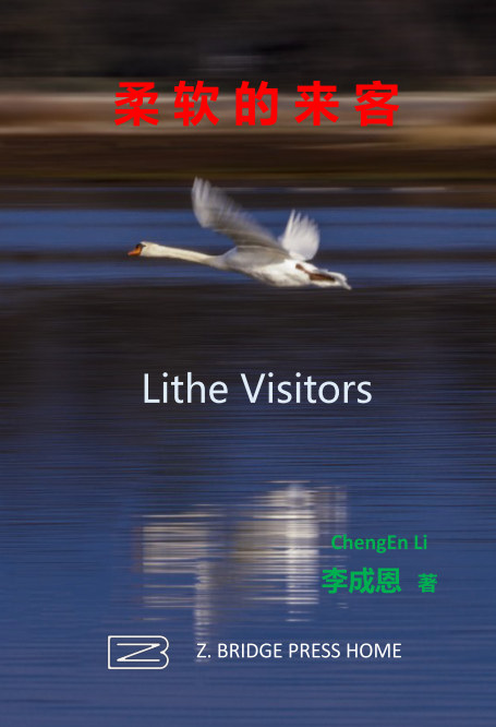 View 柔软的来客/Lithe Visitors by 李成恩