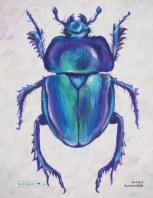 Arthropod Literary Journal book cover