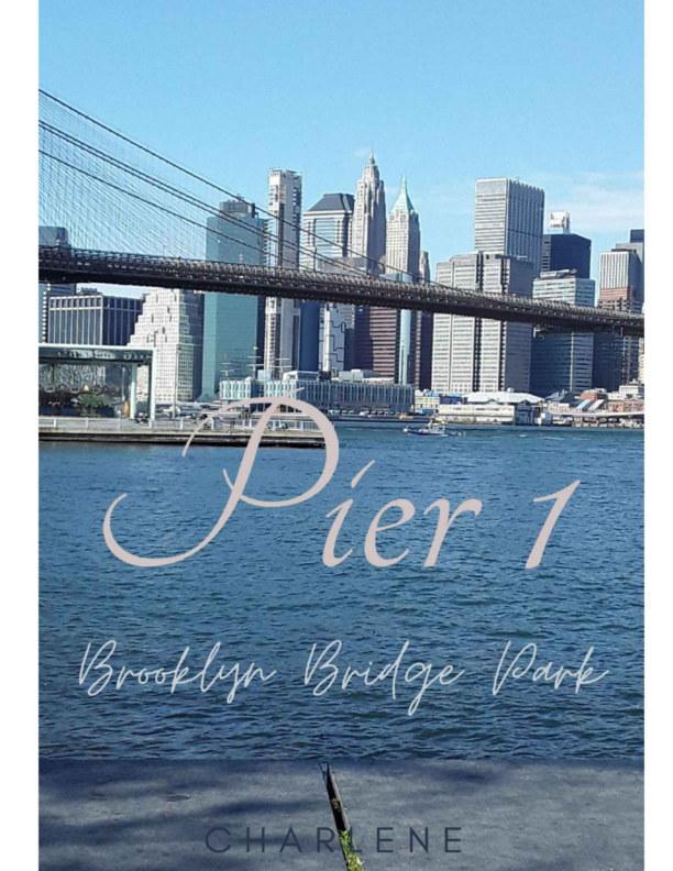 Bekijk Pier 1 - Brooklyn Bridge Park op Charlene W