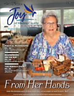 Joy of Medina County Magazine August 2021 book cover
