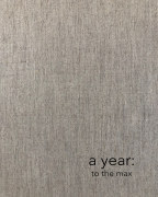 a year: to the max book cover