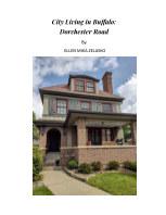 City Living in Buffalo: Dorchester Road book cover