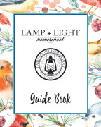Lamp + Light Year 4 Guide Book book cover
