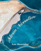 Storm Narrative book cover