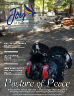 Joy of Medina County Magazine November 2021 book cover
